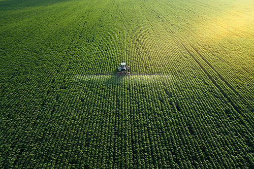 agribusiness insurance Mississippi